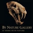 By Nature Gallery