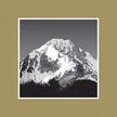 Alpine Property Management